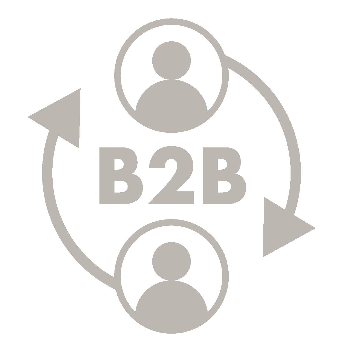 B2B-Portal